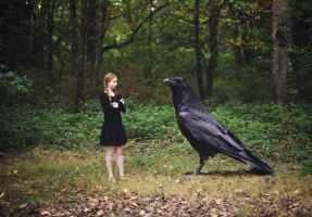 nevermore by Nnooooddllee