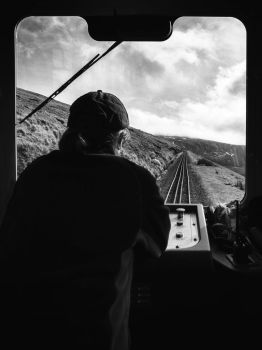 The Train Driver by Dellboyy