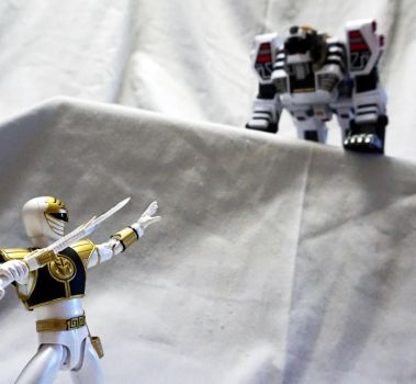 Calling White Tigerzord! by Infinitevirtue