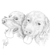 Spaniels for Friends by Ekaterina-Rose