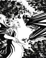 Lord Voldemort VS Lord Vader by RADMANRB