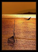 back to the golden lake by gokhanozgur
