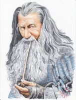 Gandalf the Grey by 0niVIRexe