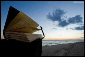 the pages frozen in time. by darksplashes