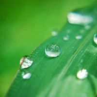 Water drops part II by BlueColoursOfNature