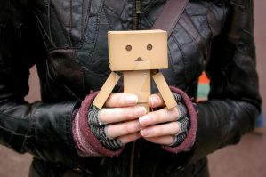 Hold Danbo by BadgerJames