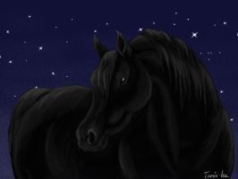 Night-Mare by Tamie-Lee