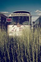 Le bus by obviologist