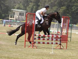STOCK Showjumping 377 by aussiegal7