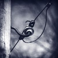 Worldly goods - electricity by wchild