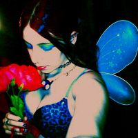 Colorful Fairy by Jenergy