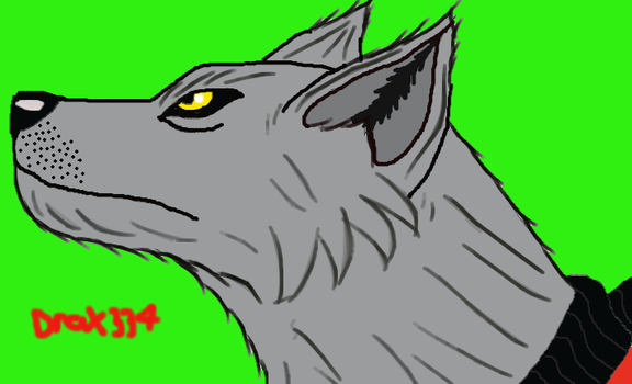 Anime Styled Feral by Drax334