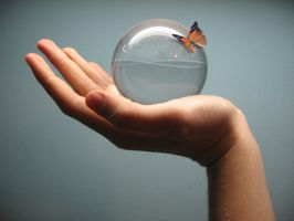 Life in a glass ball by WuHaDesign