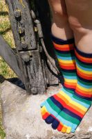 Colourful sox by DiDi-S