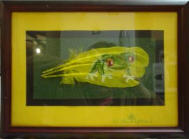 Red-eyed Frog - L - Framed by FireWolfWitch