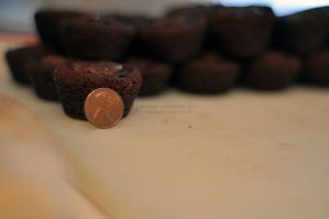 Day 17 - Penny for a Brownie by Fimrah