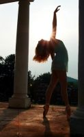 Charlottesville Ballet 1 by g00seling