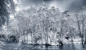 Ketchikan Creek BW Winter by Muskeg