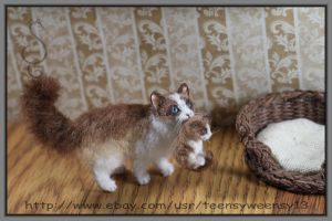 LIttle Momma Cat carrying kitten to bed by Teensyweensybaby