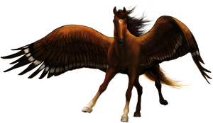 Eagle horse by Elsouille