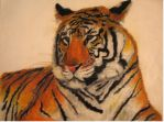 Siberian Tiger by isiskitty