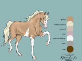 My filly Fancy by graphicsgonegreat