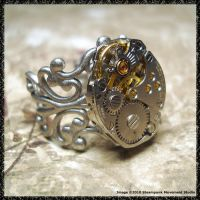 Steampunk Ring 3 by SoulCatcher06