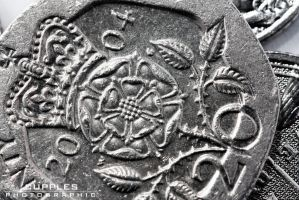 20p Coin by cupplesey