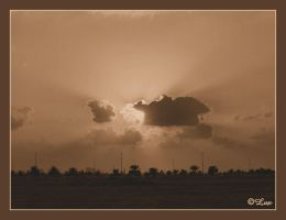 Rays of hope by LaxmiJayaraj