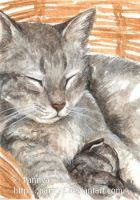 Motherly Love ACEO by Pannya