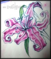 Pink Tiger Lily Tattoo by opia