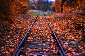 In The Tracks Of Fall by MikePio