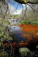 Pool of Ness: downstream view by Coigach