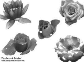DS- Flower Brushes. by dazzle-stock