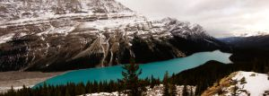 Peyto Lake by BananaJones