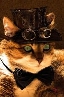 Cat steampunk by coolzero2a