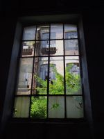 Window 6 by Anafestico