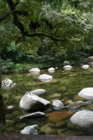 Mossman Gorge.5 by Mind-Matter