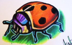 ladybird by chrisxart