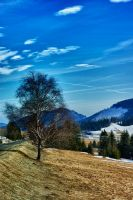 Waiting for spring HDR by minko2312