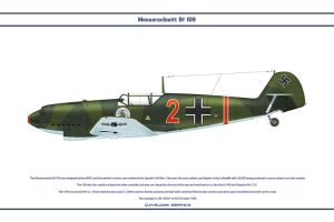 Bf 109 D-1 JGr102 2 by WS-Clave