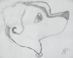 Natsume profile view by gir-is-me