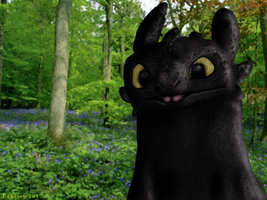 Toothless - Forest Background - More detail by Fragsey