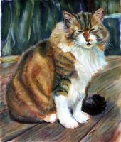 Sugar the Cat oil painting by overcome