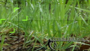 GL Grass PSP background by GrimLink