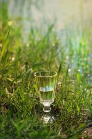 wineglass by Anti-Pati-ya