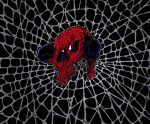 Spider's Web Coloured by Zyon23