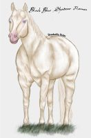 Cremello QH by BreakableHorseRider