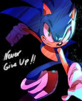 Let's not give up ! by Shira-hedgie