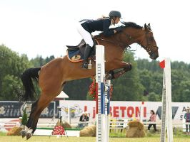 Warmblood showjumping 5 by wakedeadman